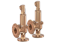 Series 852 goetze armaturen safety valves